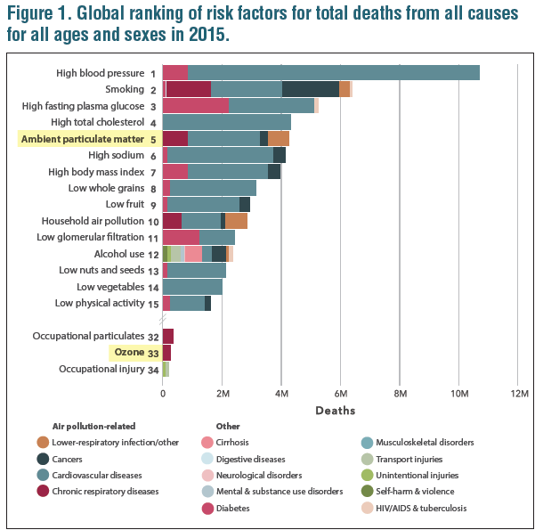 Global ranking of risk factors for total deaths from all causes for all ages and sexes in 2015