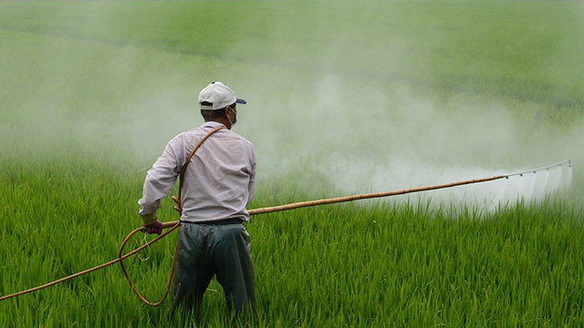 pesticide spraying in agricultural fields