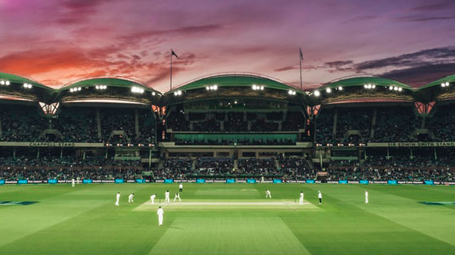 Dream11 Wins IPL 2020 Title Sponsorship: Inside the Future of Fantasy Sports in India